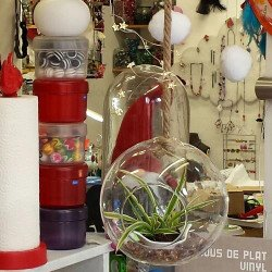 globe verre | porte plante